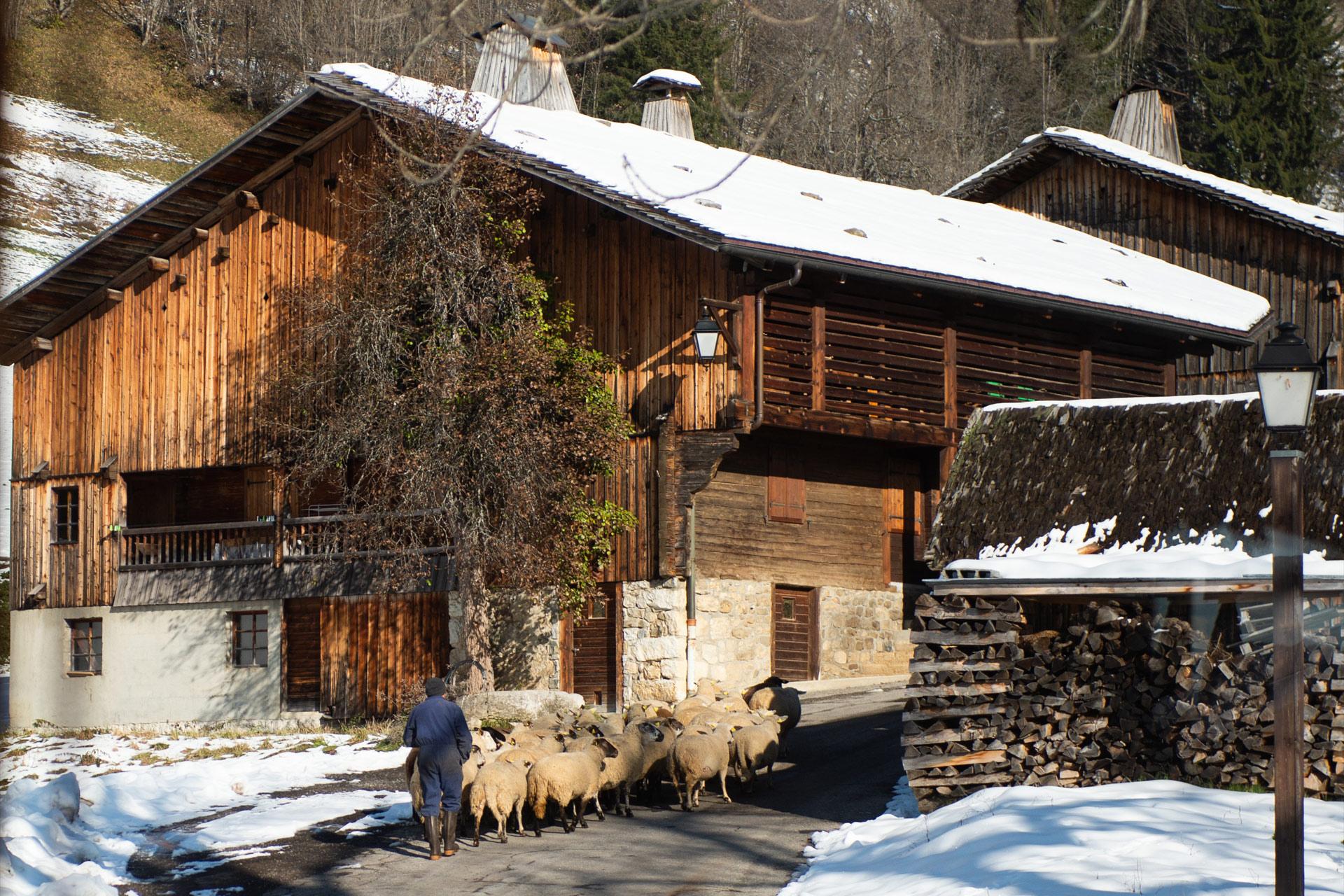 Chalet-au-coeur-d'un-village-authentique
