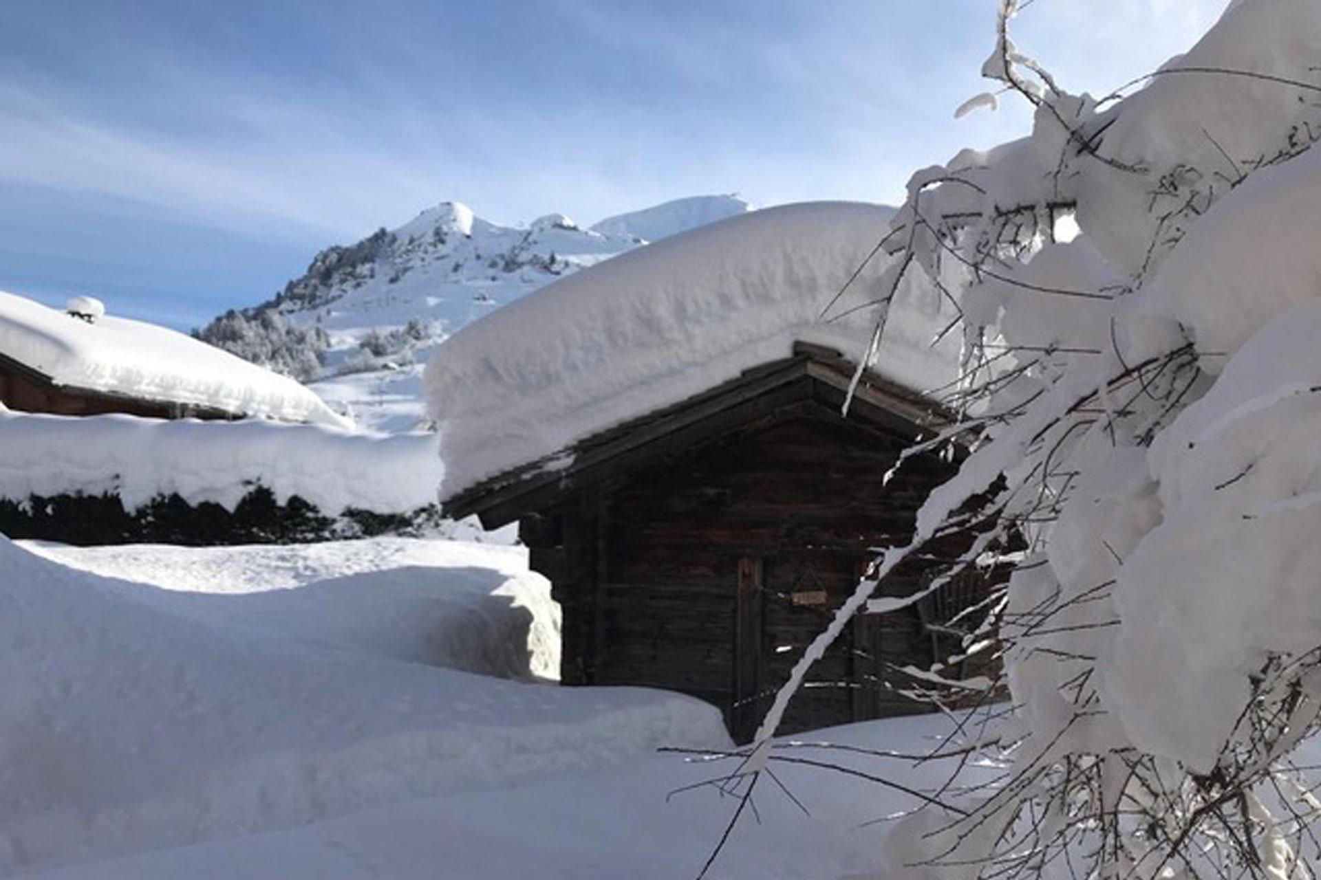Le-Sauna-Extérieure